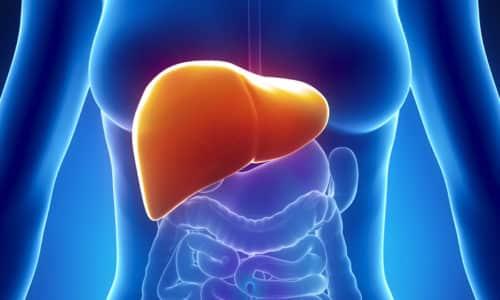 Максимальная концентрация адеметионина выявляется в паренхиме печени